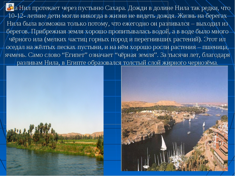 Река Нил протекает через пустыню Сахара. Дожди в долине Нила так редки, что 1...