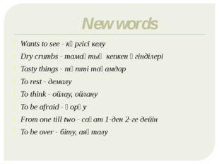New words Wants to see - көргісі келу Dry crumbs - тамақтың кепкен үгінділері