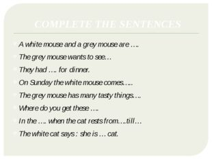 COMPLETE THE SENTENCES A white mouse and a grey mouse are …. The grey mouse w