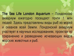The Sea Life London Aquarium – Лондонский аквариум ежегодно посещают почти 1
