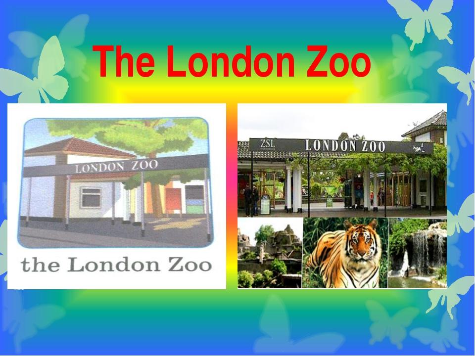 The London Zoo