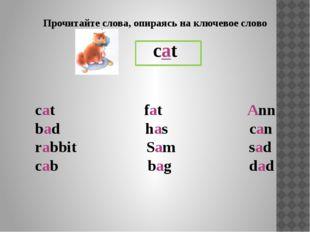 закрытый тип открытый тип Гласная буква читается по-разному: pig tiger Ii