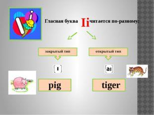 Гласная буква читается по-разному: закрытый тип открытый тип pen bee Ee
