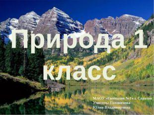Природа 1 класс МАОУ «Гимназия №1» г. Саратов Учитель: Головичева Юлия Владим