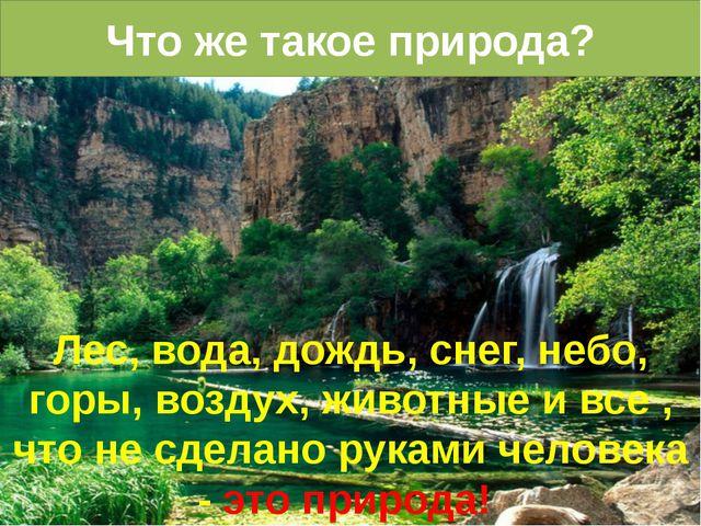 Что же такое природа? Лес, вода, дождь, снег, небо, горы, воздух, животные и...
