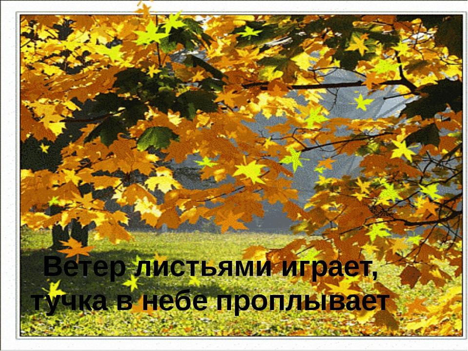 Ветер листьями играет, тучка в небе проплывает