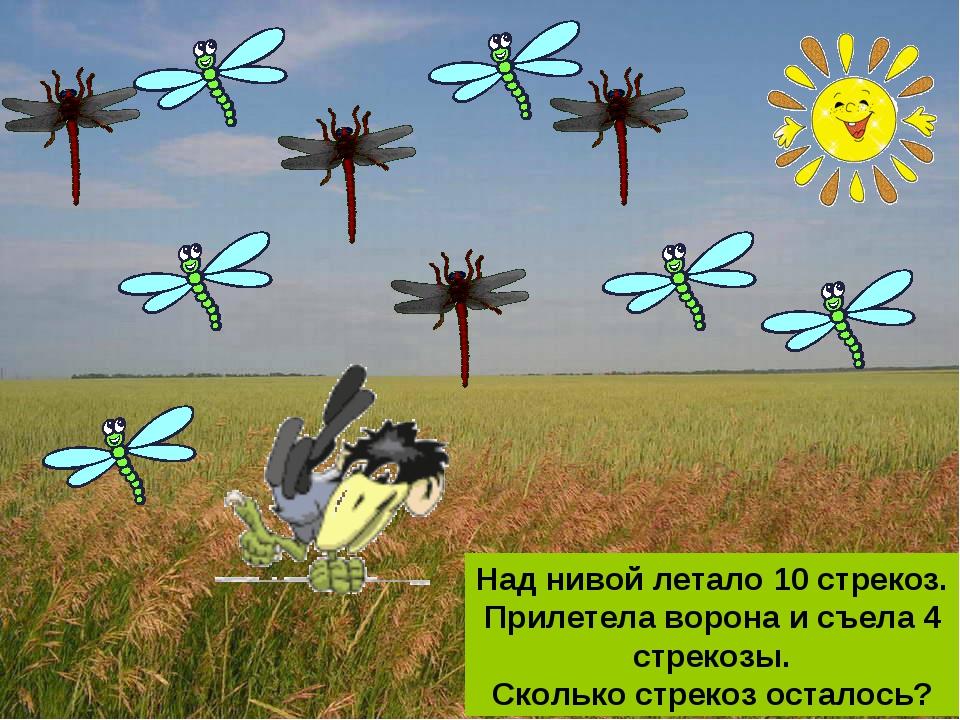 Над нивой летало 10 стрекоз. Прилетела ворона и съела 4 стрекозы. Сколько стр...