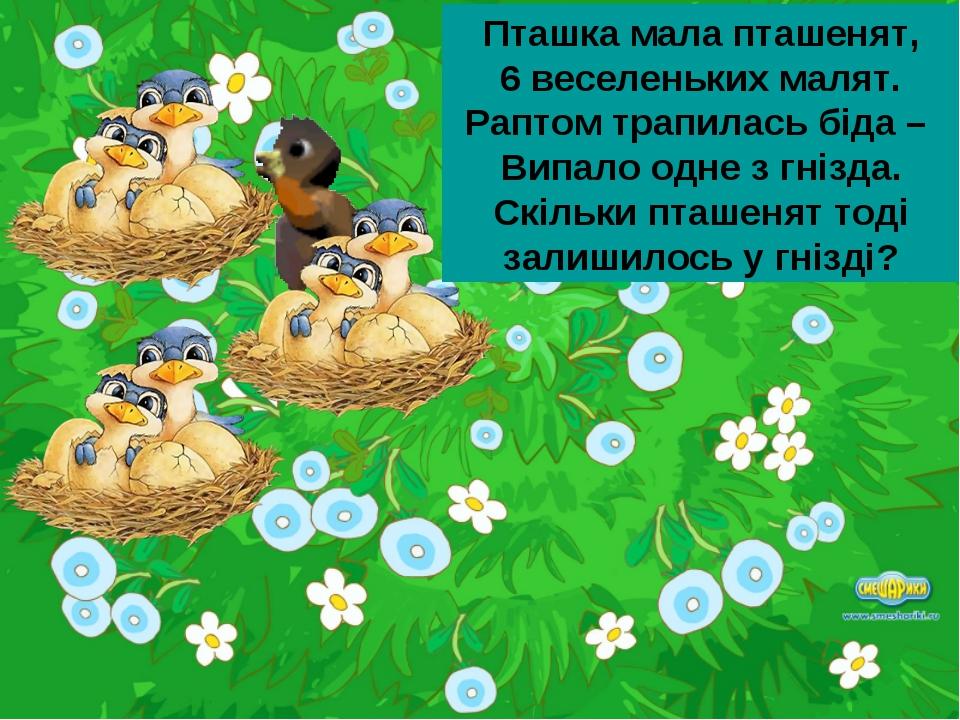Пташка мала пташенят, 6 веселеньких малят. Раптом трапилась біда – Випало одн...