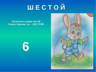 За Котом в траве густой Скачет Кролик, он – ШЕСТОЙ! 6 Ш Е С Т О Й