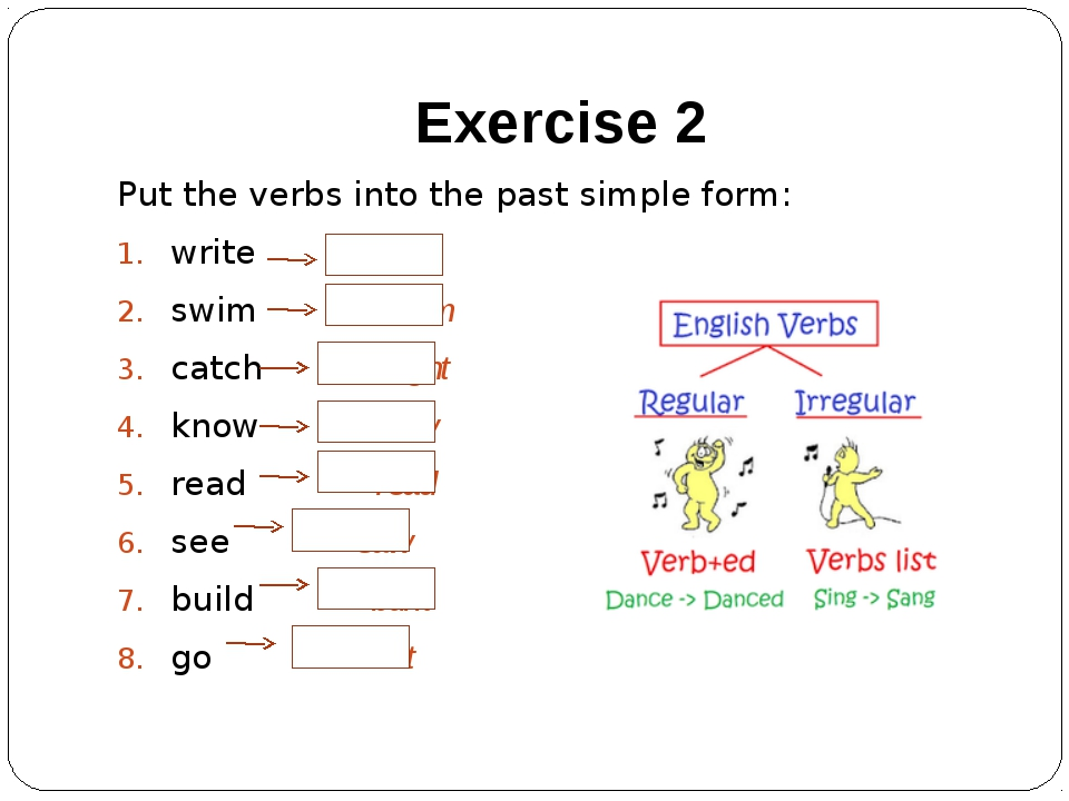 Exercise 2 Put the verbs into the past simple form: write wrote swim swam cat...