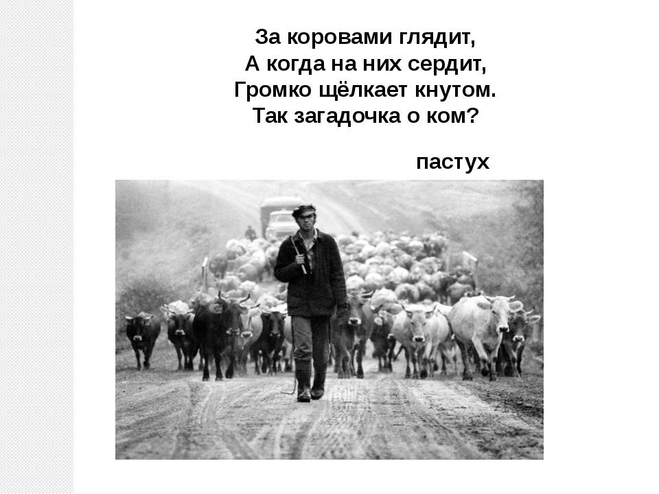 пастух За коровами глядит, А когда на них сердит, Громко щёлкает кнутом. Так...