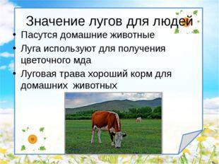 Пасутся домашние животные Луга используют для получения цветочного мда Лугова