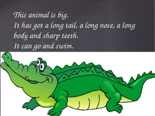 This animal is big. It has got a long tail, a long nose, a long body and shar