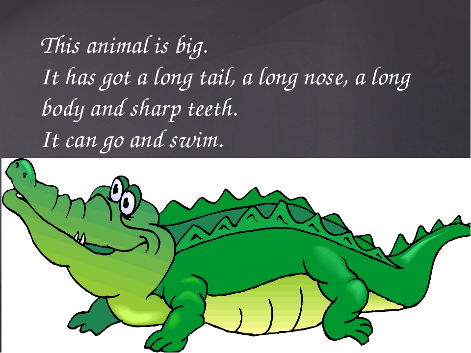 This animal is big. It has got a long tail, a long nose, a long body and shar...
