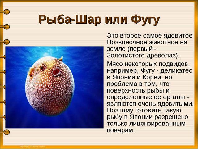 Рыба-Шар или Фугу Это второе самое ядовитое Позвоночное животное на земле (п...