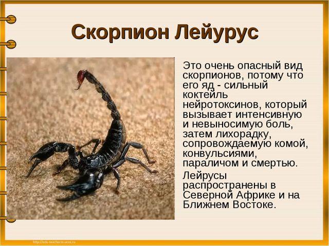 Мужчина скорпион как понять что ты ему нравишься — этот вопрос волнует всех женщин, положивших глаз на этого самоуверенного и брутального мужчину.