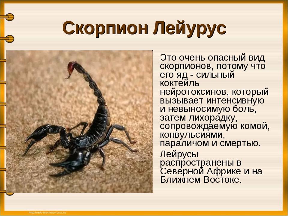 Horoskop Skorpion Sternzeichen