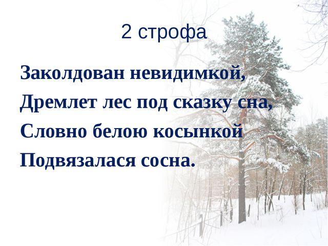 2 строфа Заколдован невидимкой, Дремлет лес под сказку сна, Словно белою косы...