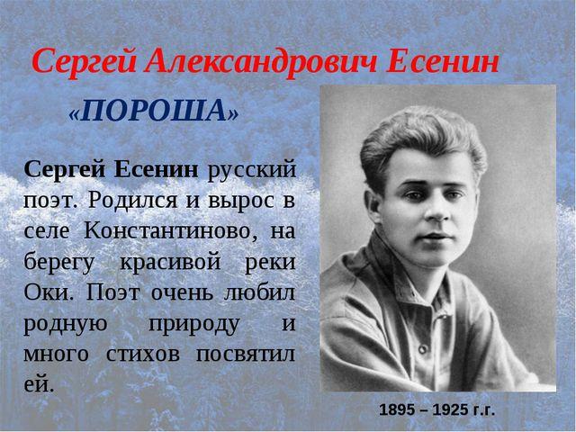 Сергей Александрович Есенин «ПОРОША» 1895 – 1925 г.г. Сергей Есенин русский п...