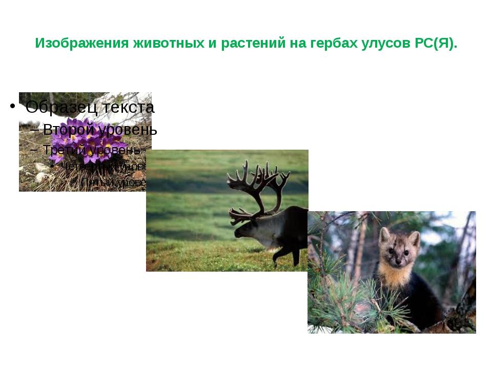 Изображения животных и растений на гербах улусов РС(Я).