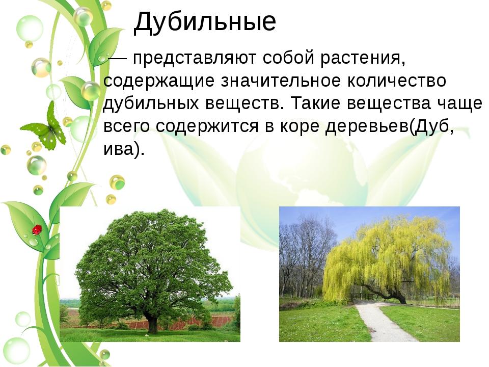 Дубильные — представляют собой растения, содержащие значительное количество...