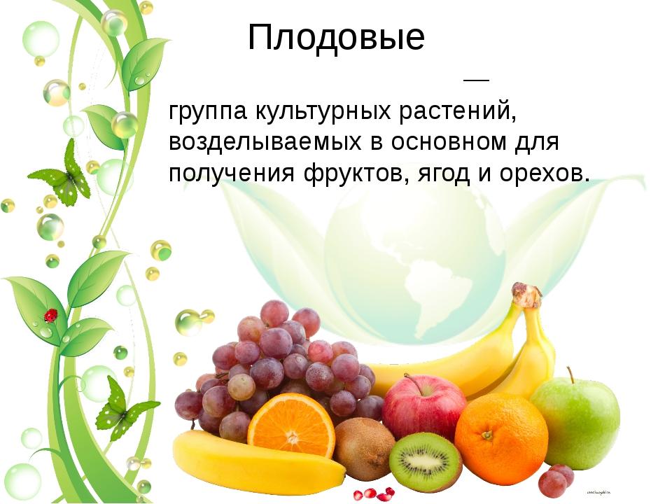 Плодовые Плодо́вые культу́ры— группакультурных растений, возделываемых в ос...