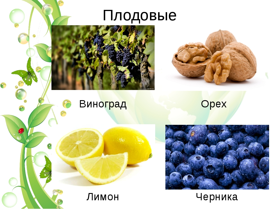 Плодовые Виноград Ореx Лимон Черника
