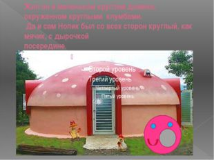 Жил он в маленьком круглом домике,  окруженном круглыми  клумбами.  Да и сам