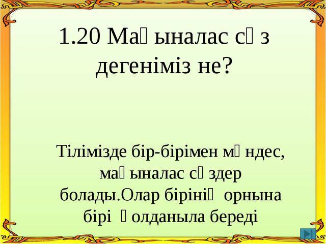 3.20 Дыбысталуы бірдей,әртүрлі мағыналы сөздерге мысал келтір