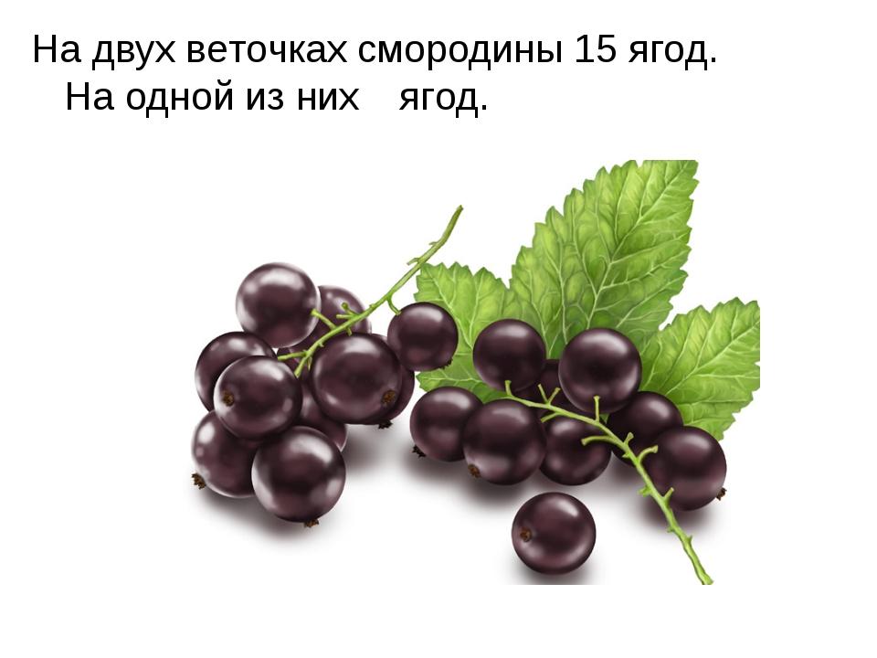 На двух веточках смородины 15 ягод. На одной из них  ягод.