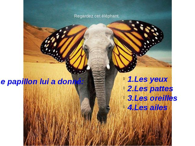 Regardez cet éléphant. 1.Les yeux 2.Les pattes 3.Les oreilles 4.Les ailes Le...
