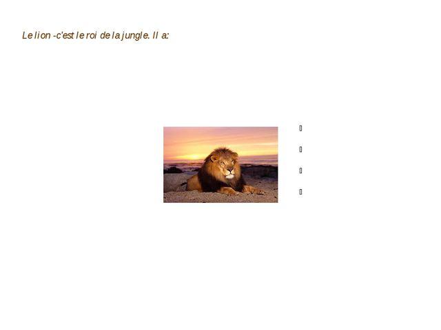 Le lion -c'est le roi de la jungle. Il a: 1.La poche 2.La couronne 3.Les yeux...