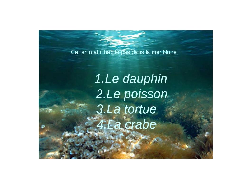 Cet animal n'habite pas dans la mer Noire. 1.Le dauphin 2.Le poisson 3.La tor...