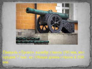 Пищаль «Троил» калибр ствола 195 мм, вес орудия 7 тыс. кг. Общая длина ствола