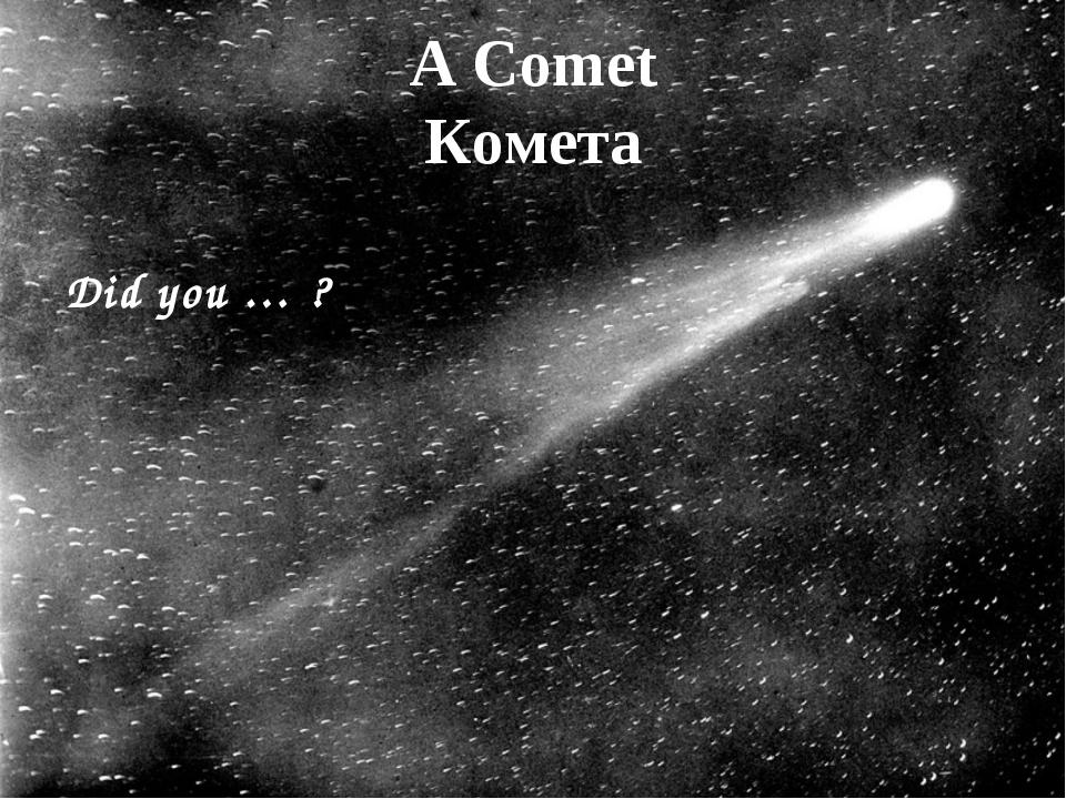 A Comet Комета Did you … ?