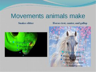 Movements animals make Snakes slitter Horses trot, canter, and gallop