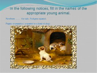 In the following notices, fill in the names of the appropriate young animal.