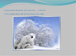 Come and see the brand- new polar bear … at the zoo. Cub (s) (polar bears, l