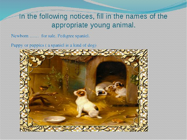 In the following notices, fill in the names of the appropriate young animal....