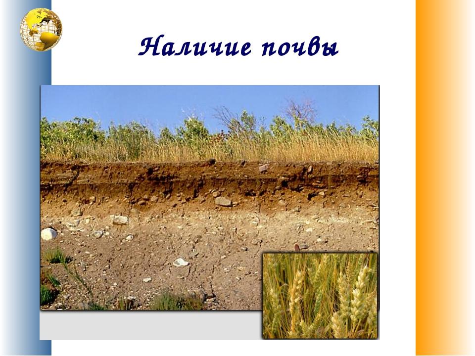 Наличие почвы