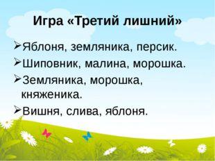 Игра «Третий лишний» Яблоня, земляника, персик. Шиповник, малина, морошка. Зе