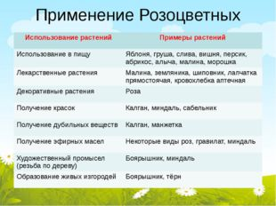 Применение Розоцветных Использование растений Примеры растений Использование