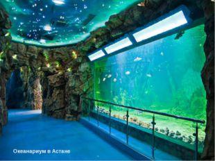 Северный район Боровое Астана Океанариум в Астане