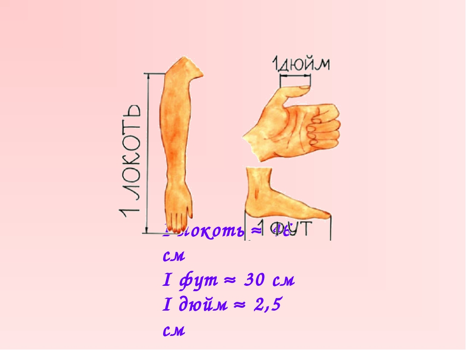 I локоть  46 см I фут  30 см I дюйм  2,5 см