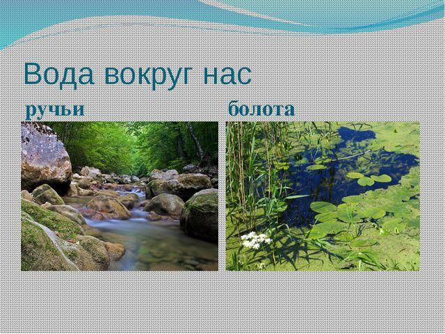 Вода вокруг нас ручьи болота