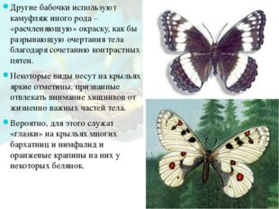 Другие бабочки используют камуфляж иного рода – «расчленяющую» окраску, как б