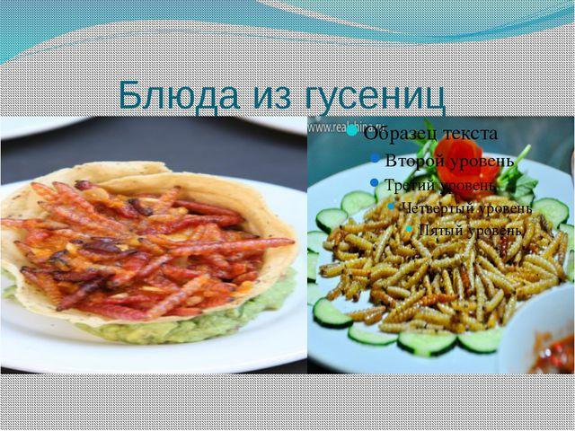 Блюда из гусениц