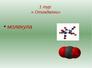 1 тур « Отгадалки» молекула