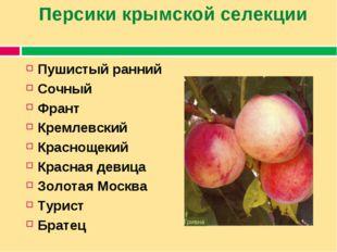 Персики крымской селекции Пушистый ранний Сочный Франт Кремлевский Краснощеки