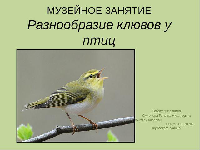 МУЗЕЙНОЕ ЗАНЯТИЕ Разнообразие клювов у птиц Работу выполнила Смирнова Татьяна...